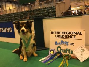 crufts obedience Tor
