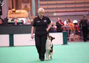 Tor at Crufts